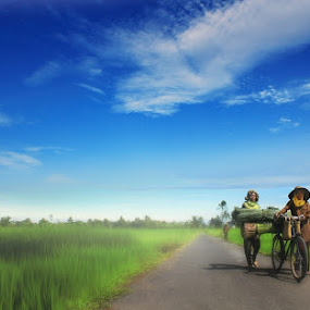 :: PULANG :: by Ezha Nizami - Landscapes Prairies, Meadows & Fields