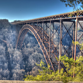 New River Gorge Bridge by Cal Brown - Buildings & Architecture Bridges & Suspended Structures ( west virginia, gorge, architecture, bridge, river,  )