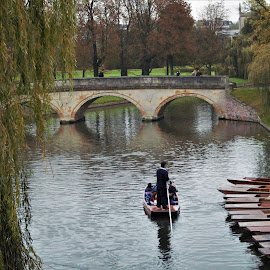 River Cam #2 by Jake Mottram - Nature Up Close Water ( water, river cam, punts, cambridgeshire, cambridge )