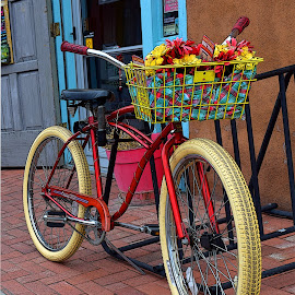 Bringing Home the Flowers by Shawn Thomas - Transportation Bicycles ( red, colorful, transportation, flowers, classic, bicycle )