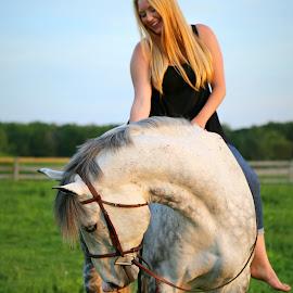 Blue Skies Green Grass by Emma Reeves - Animals Horses ( irish sport horse, equine, horses, emma rose photography, bareback,  )