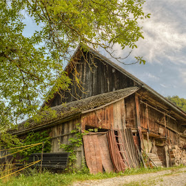 old stable by Mara R. Sirako - Buildings & Architecture Other Exteriors ( countryside, farm, building, old, mountain, wooden, wood, stable, rural, country, abandoned )