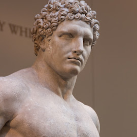 Marble statue of a youthful Hercules by Judy Florio - Artistic Objects Antiques ( antiquity, sculpture, statue, marble, art, museum )