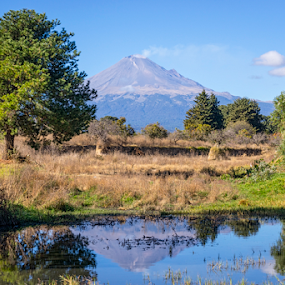 Popocatepetl with reflections by Cristobal Garciaferro Rubio - Landscapes Travel ( lagoon, volcano, popo, popocatepetl, reflections, lake )