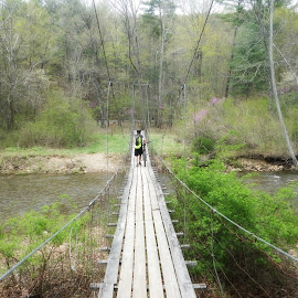 Douthat State Park by Mary Kaye Zugelder - Landscapes Forests ( epic, mountain biking, virginia, bridge, spring,  )