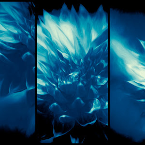 Cyan Flower.jpg
