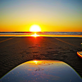 Surfing by Teodora Motateanu - Sports & Fitness Surfing ( surf, sunset, water, sea, board )