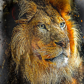 by Ron Meyers - Digital Art Animals