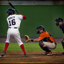 Swinging For The Bigs by Elk Baiter - Sports & Fitness Baseball ( center fielder, catcher, baseball, keys, frederick, sports, nationals, game, batter, potomac )