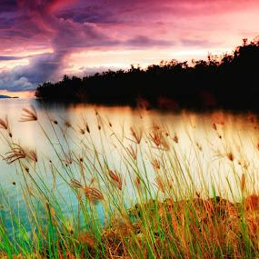 by Hansen Christian - Landscapes Prairies, Meadows & Fields