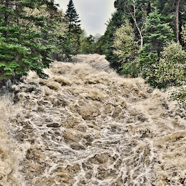 Waterford River At Flash Flood Stage. by Harold Bradley - Nature Up Close Water