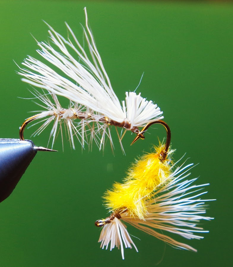 Elk Hair Caddis and Variant by Kirk Barnes - Artistic Objects Other Objects ( fly, fishing lure, white, macro photography, yellow, fly tying, caddis, elk hair )