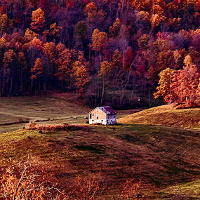 On a Hill by Scott Bryan - Landscapes Mountains & Hills ( hill, ohio, barn, fall, landscape, alone, rural, aut )