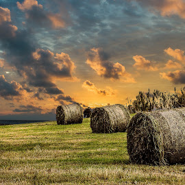 by Jorge Pacheco - Landscapes Prairies, Meadows & Fields