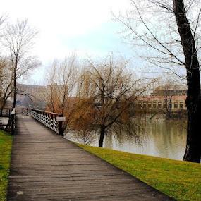 by Viktória Nagy - City,  Street & Park  City Parks