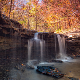 Autumn Waterfall by Eric Wellman - Landscapes Waterscapes ( fall, waterfall, yellow )