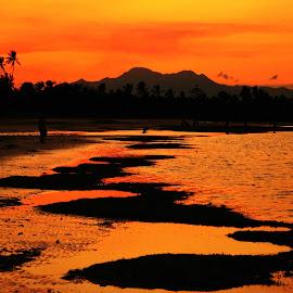Gold by Helton Balairos - Landscapes Sunsets & Sunrises (  )