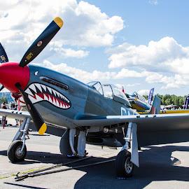 The Shark by Terje N. Johansen - Transportation Airplanes