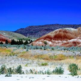 Painted Hills by Ann Rainey - Landscapes Mountains & Hills ( hills, mountains, painted, nature, colors, beauty, landscape )