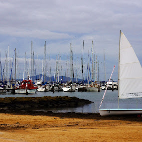 Eastern Beach, Geelong by Sassine El Nabbout - Landscapes Beaches ( geelong, sama creations )