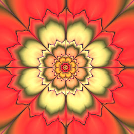 Flower 6 by Cassy 67 - Illustration Abstract & Patterns ( abstract, orange, abstract art, digital art, harmony, relaxing, flowers, fractal, digital, fractals, flower )