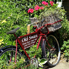 Old Swan by Mick Wells - Transportation Bicycles ( england, bike, basket, summer, flowers, english, pub, quaint, bicycle,  )