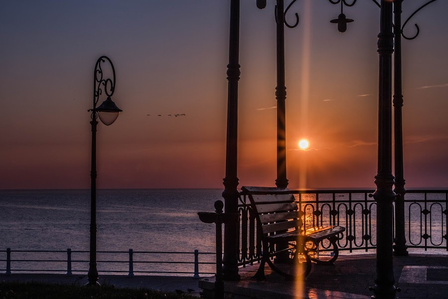 by Dumy Constantin - City,  Street & Park  City Parks