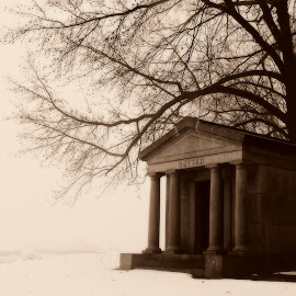 Foggy Mausoleum by Brenda Conrad - Buildings & Architecture Other Exteriors ( mausoleum, fog, snow, cemetery, graveyard,  )