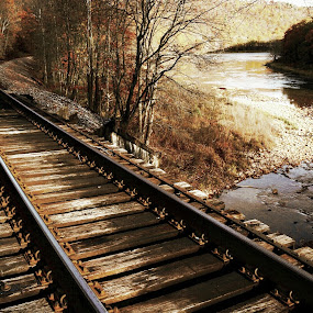 Vintage Rails by Travis Houston - Transportation Railway Tracks