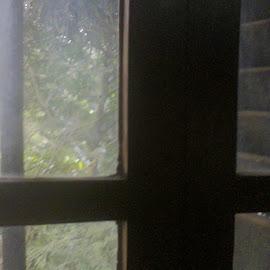 the glass pattern by Jayita Mallik - Abstract Patterns ( eymet, pattern, green, glass, window-lid )