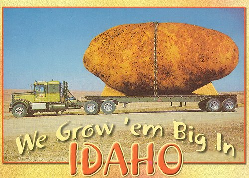 Postcard Friendship Friday #23 - Quirky French Potato History