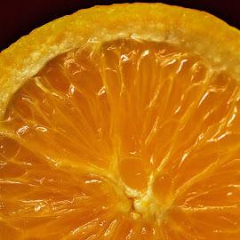 Sliced Orange by Prasanta Das - Food & Drink Fruits & Vegetables ( orange, details, sliced )