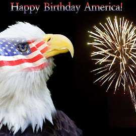 Happy birthday America! by Steven Faucette - Typography Captioned Photos