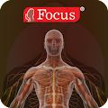 Download Atlas anatomía APK for Laptop