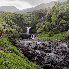 by Kirk Meadows - Uncategorized All Uncategorized ( tropical, greenery, green, waterfall )