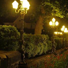 Summer City Street by Gerard Zarella - City,  Street & Park  Historic Districts ( street lamps, sharon pa, city )