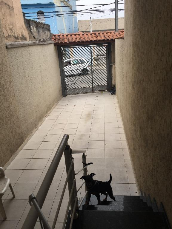 Casa Sobrado à venda/aluguel, Vila Talarico, São Paulo