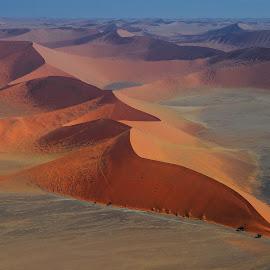 Red dunes   by Tomasz Budziak - Landscapes Deserts ( dunes, desert, africa, namibia )