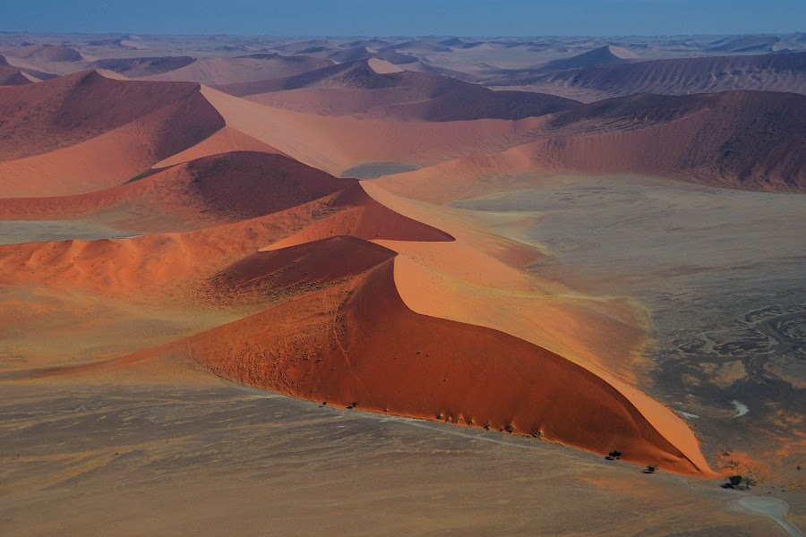Red dunes   by Tomasz Budziak - Landscapes Deserts ( dunes, desert, africa, namibia,  )