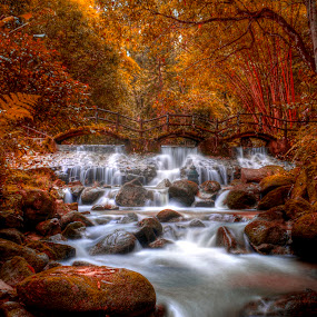 Autumn Has Come by Nadzli Azlan - Landscapes Waterscapes