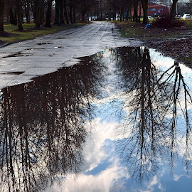 by Vida Jankaitiene - Nature Up Close Water