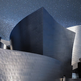 The Symphony by William Kauffman - Buildings & Architecture Other Exteriors ( frank gehry, music hall architecture, buildings, walt diney, architecture )