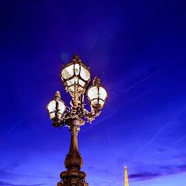 Tower Lamp by Luis Silva - Buildings & Architecture Architectural Detail ( eiffel tower, paris, alexander, 2015, bridge, blue hour )