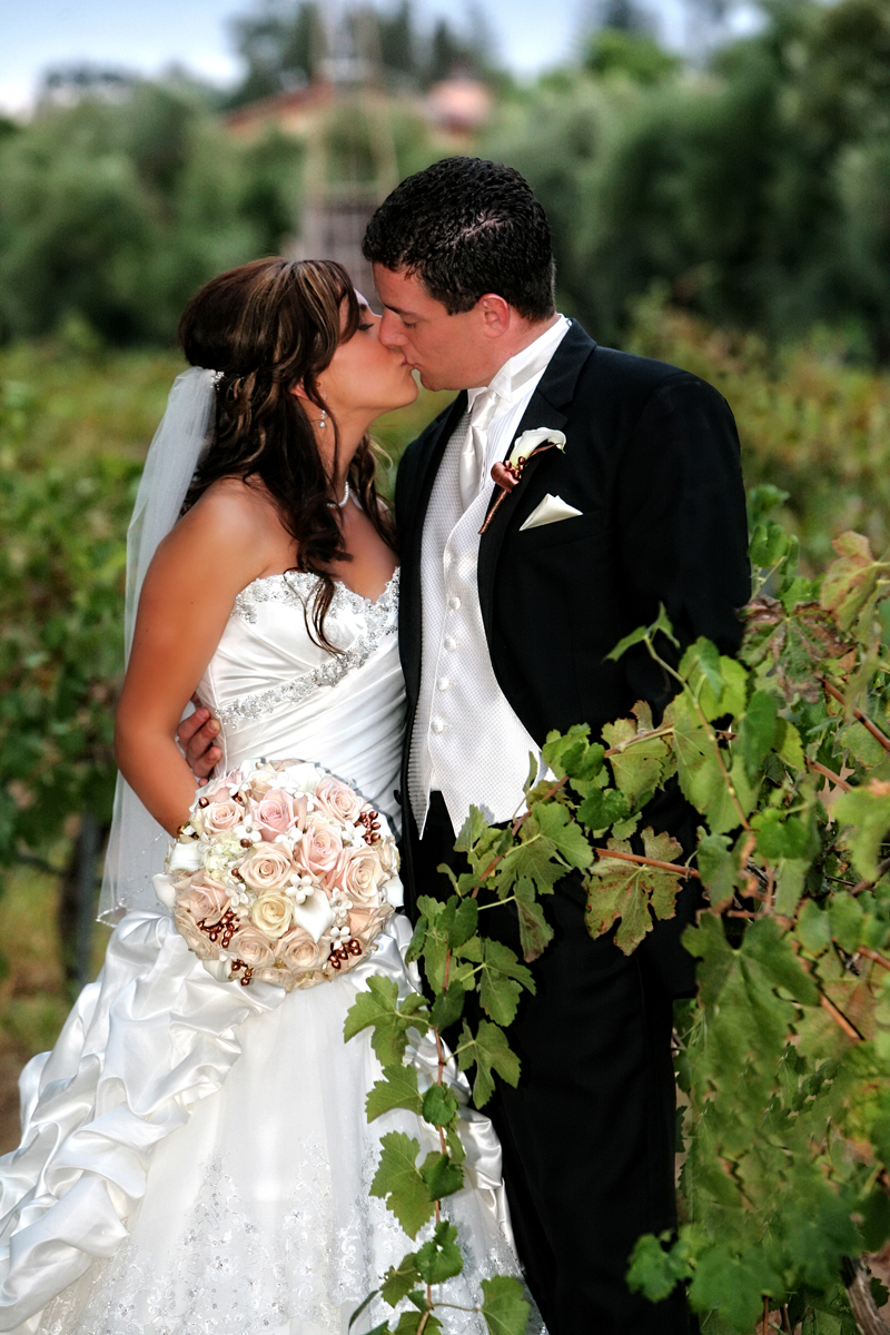 a wine country wedding in