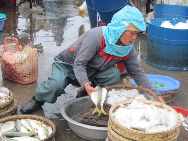 Hoi An fish market