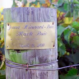 Vineyard Post Plaque by Gary Langston Jr. - Nature Up Close Gardens & Produce ( post, vineyard, plaque )