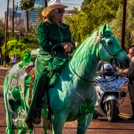 St. Patricks Day Horse by Fred Herring - City,  Street & Park  Street Scenes
