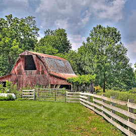 Barn Near War Eagle Mill, AR by Jay Stout - Buildings & Architecture Other Exteriors