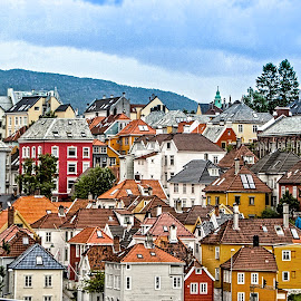 Bergen Hillside by Richard Michael Lingo - City,  Street & Park  Neighborhoods ( hillside, city, norway, neighborhood, bergen )