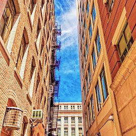 Between the Buildings by Richard Michael Lingo - Buildings & Architecture Other Exteriors ( exterior, courthouse, cincinnati, building, architecture )